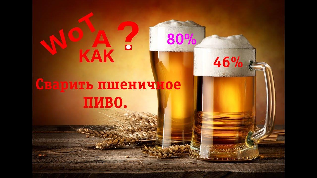 Рецепт приготовления пшеничного пива