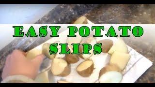"DIY Potato ""Seeds""  | From Your Own Potato"