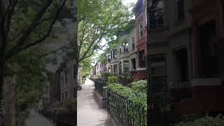 Prospect Lefferts Garden, Brooklyn, NY - Historic Townhomes