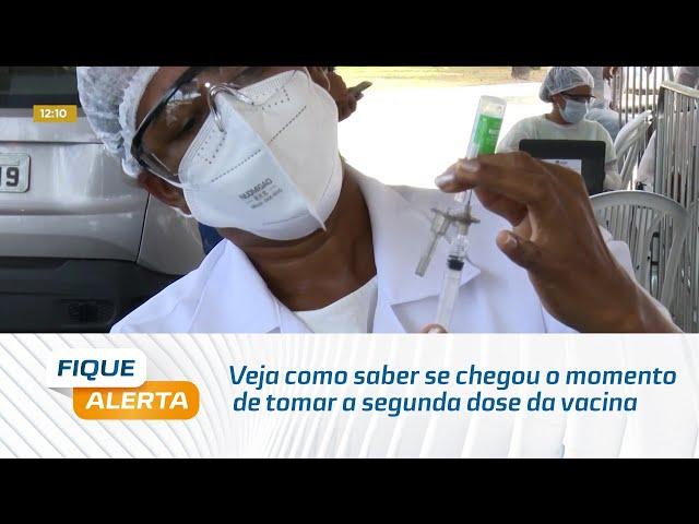 Covid-19: Veja como saber se chegou o momento de tomar a segunda dose da vacina