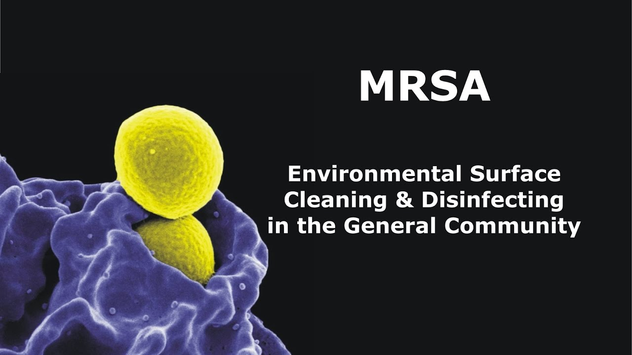 methicillin resistant staphylococcus aureus Mrsa infection is a type of staph infection that is resistant to antibiotic treatment physician developed and monitored information about this serious infection.