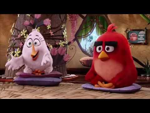Primera Clase De Control De Ira - Angry Birds - Español Latino.