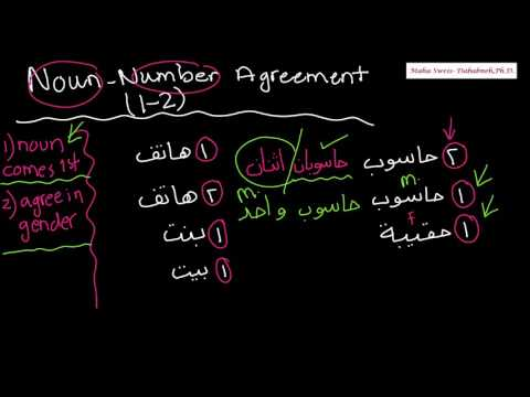 Arabic Language for Beginners Video 169- Noun Number Agreement 2 Number 1-2