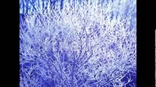 ヴィヴァルディ 「四季」より「冬」 高音質 FULL