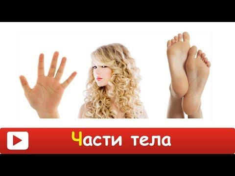 «Ноги к чему снятся во сне? Если видишь во сне Ноги, что