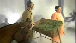 Truyện Cổ Tích Việt Nam — Sự Tích Cây Chổi