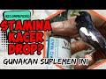 Kacer Drop Stamina Gunakan Suplemen Ini Pro Max  Mp3 - Mp4 Download