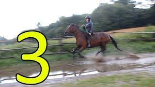 Natural - jak nauczyć konia wchodzić do wody cz.3