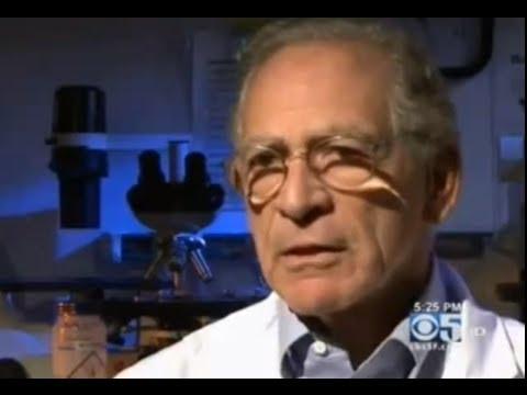 Stanford Kidney Transplant - No Anti Rejection Drugs on CBS 5