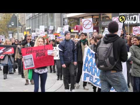 Demo für Tierrechte