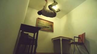 Inception zero gravity effect for $350 bucks!!