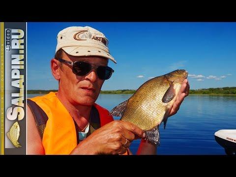 снасти для ловли леща с глубины на озере