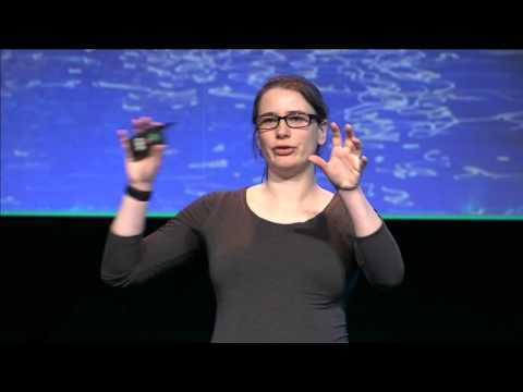 A PaaS for Government - Anna Shipman