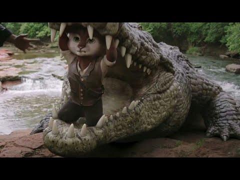Download Best magicial HD clip of Adventurs of Rufus Fantastic pet 2020 English