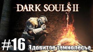 Ядовитое Темнолесье [Dark Souls 2 #16]