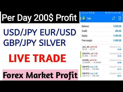 Forex trading profits per day