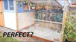 Building The Perfect Aviary