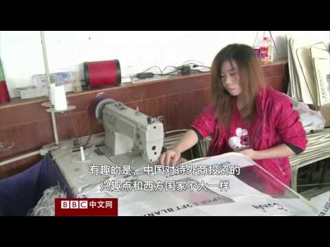 BBC China interview: What is FDI's contribution to China's growth?