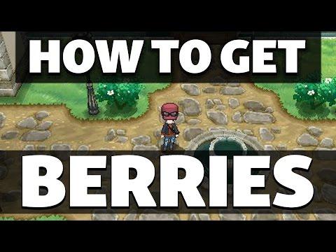 HOW TO GET Cheri, Chesto, Pecha And Rawst Berry In Pokemon XY
