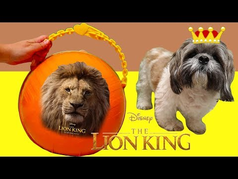 LOL Big Surprise Custom Ball with Lion King Toys and Dolls ! SWTAD Kids