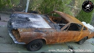 Fire Damaged 1965 Mustang Fastback Crush it or save it ? Mustang Connection