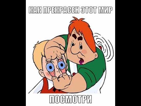 Подборка фото приколов из Whatsapp # 7