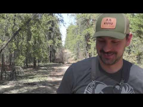 2018 Northern Alberta Spring Bear Hunt