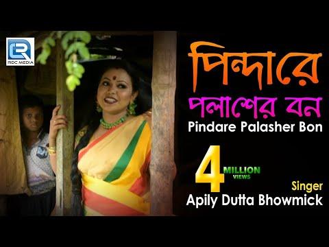 Pindare Polasher Bon | পিন্দারে পলাশের বন | Bengali Jhumur Dance Song | Apily Dutta Bhowmick