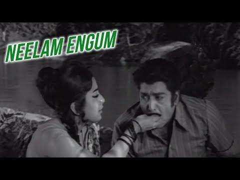 Neelam Engum Full Song   சொந்தம்   Sondham Video Songs   K.R Vijaya   Muthuraman