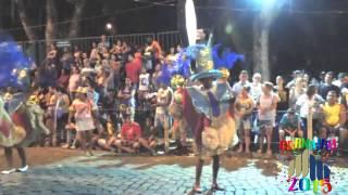 Carnaval 2015 em Cataguases - Desfile da União dos Bairros - Segunda (16/02/2015)
