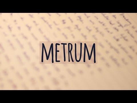 Metrum einfach erklärt! | Jambus | Trochäus | Anapäst | Daktylus