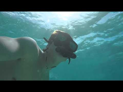 Snorkling the Bay of Pigs