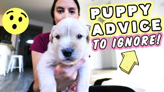 POPULAR PUPPY ADVICE TO AVOID!!! 😮 Don't fall for these bad tips