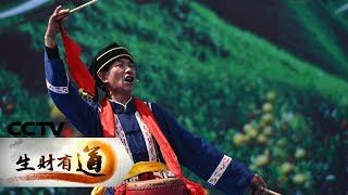 《生财有道》 20190618 土家风情浓 乡村旅游热| CCTV财经