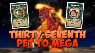 Wizard101: Training My Pet To Mega #37