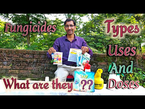 What Are Fungicides ? Types , Doses , Utilities And Availability.