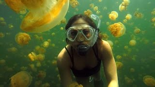 Ginger Zee Travels to Palau