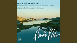Nr. 3 Springdans fra Vinje (Springtanz aus Vinje)