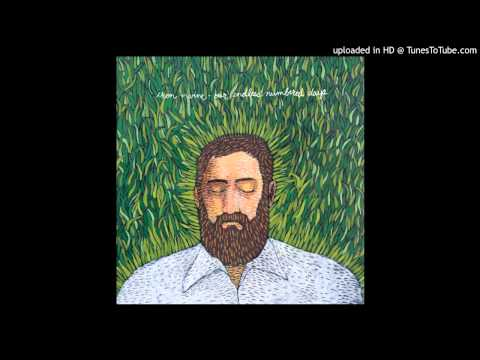 Iron & Wine - Sodom, South Georgia