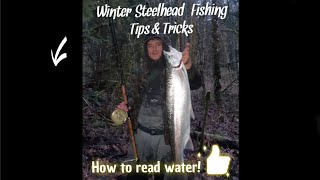 BC Winter Steelhead 2020 How to read water Tips Tricks
