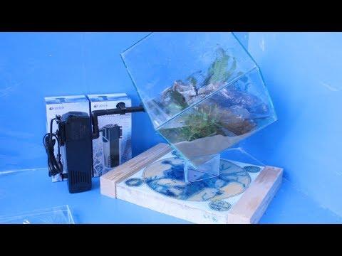 видео: Розыгрыш призов и оформление аквариума