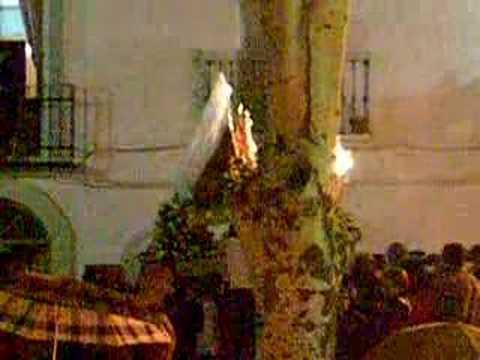 Fiestas de Mayo 2007.-Entrada de la Virgen de la Fuensanta