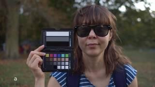 Blackmagic Pocket Cinema Camera 4k vs Panasonic GH5s skin color test