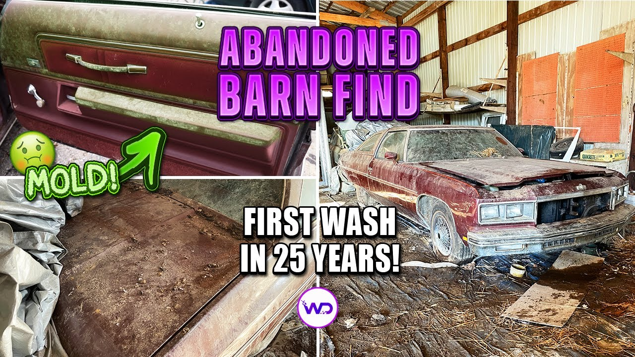 Download ABANDONED BARN FIND First Wash In 25 Years Chevy Caprice! Satisfying Car Detailing Restoration