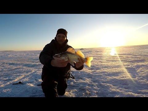 рыбалка в нижнекамске на судака