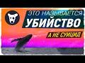 НА САМОМ ДЕЛЕ ИХ УБИЛИ группы смерти вк Синий кит игра тихий дом F57 морекитов 4 20 морекитов mp3