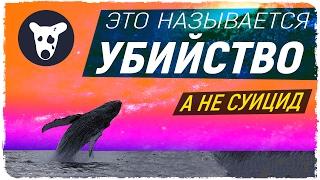 НА САМОМ ДЕЛЕ ИХ УБИЛИ (группы смерти вк) Синий кит игра. тихий дом. f57 #морекитов 4:20 #морекитов