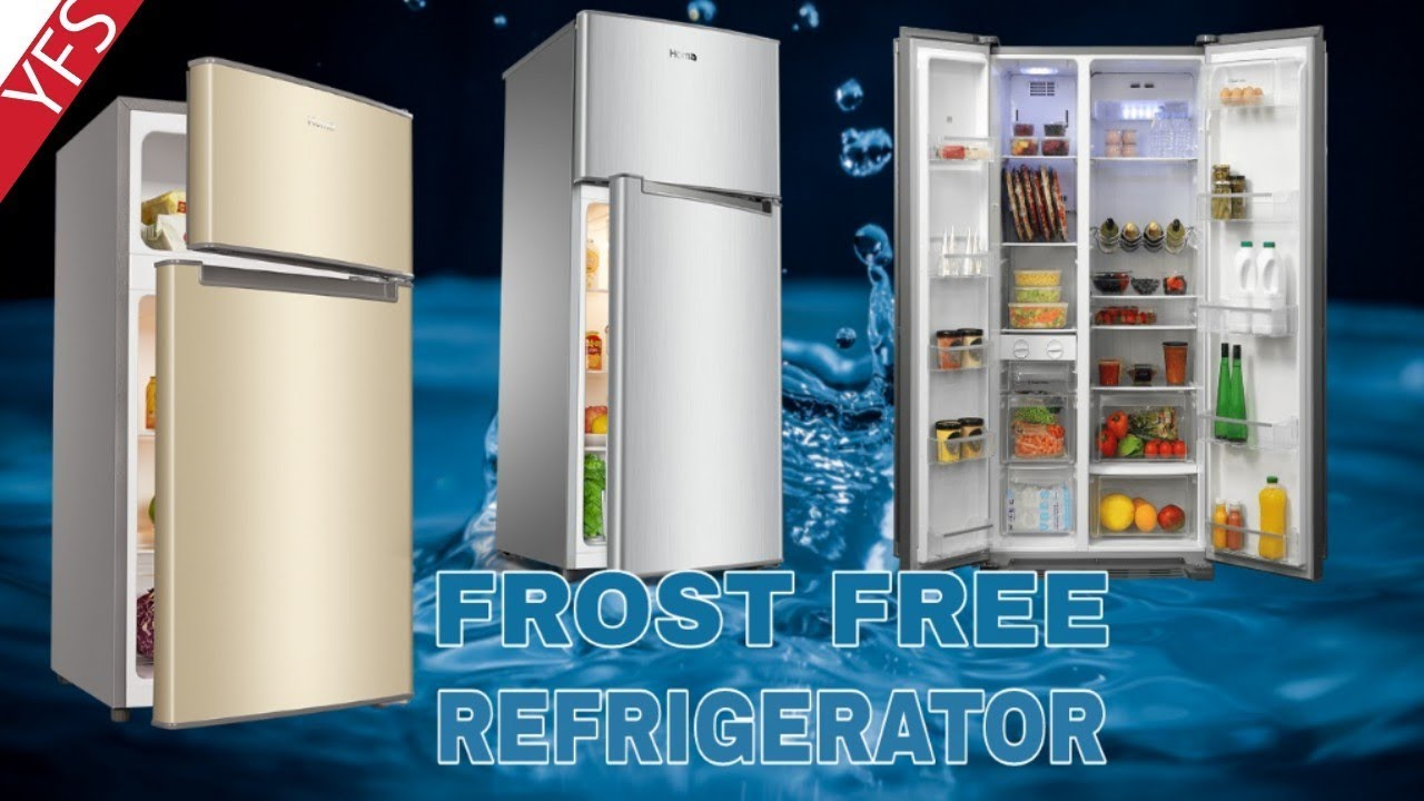 10 Best Double Door Refrigerator 2018   Frost Free (3 Star)