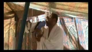 numidia travel services,hadj2008,part 4