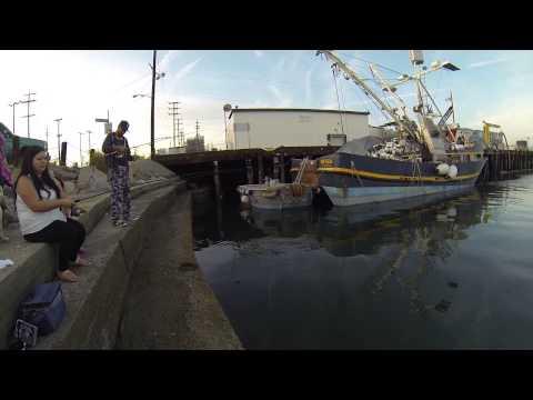 Fishing San Pedro Harbor With The Fambam